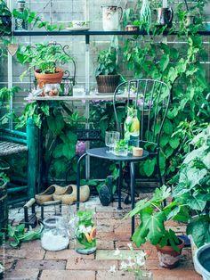 Svalkande isvatten fullproppat med grape, citron och mynta. Både gott och nyttigt! På LÄCKÖ stol står IKEA 365+ karaff med kork, IKEA 365+ vinglas och FRASERA whiskyglas. Kristin Lagerqvist, Krickelin för Livet Hemma