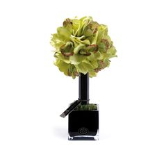 Discover the Herve Gambs Green Couture Orchid Topiary at Amara
