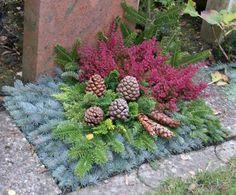 Bildergebnis für grabbepflanzung winter