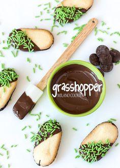 Grasshopper Milano C