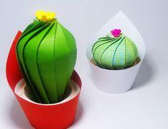 Little Paper Cactus