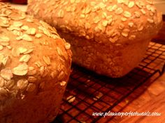 Check out seven grain cereal bread its so easy to make cereal homemade multigrain bread seven grain hot cereal mix water all purpose ccuart Gallery