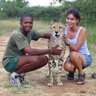social services SOUTH AFRICA - Google Search Social Services, South Africa, Giraffe, Google Search, Animals, Felt Giraffe, Animales, Animaux, Giraffes