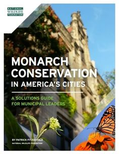 """100 Mayors Take Action to Save the Monarch Butterfly 