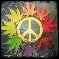 Imagine All The People Living Life In Peace ☮️ Hippie Love, Hippie Chick, Hippie Art, Peace Love Happiness, Peace And Love, Seasons In The Sun, Peace Pole, Give Peace A Chance, Peace Art