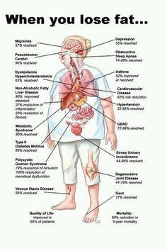 BIO E® World: What Happens When You Lose Fat