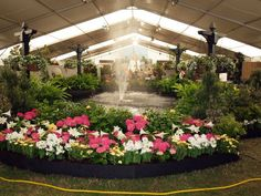 Come see the largest outdoor flower show in the Southeast, through April 1. The Providence Hospital Foundation's Festival of Flowers is acknowledged as the premier flower and garden event of the greater Gulf Coast. www.festivalofflowers.com