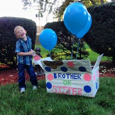 Ok, I love the spin on this idea for the older sibling(s) announcing the gender reveal... love, love, love.