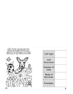 Cell Organelles and Biomolecules coloring sheet Nucleic