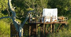 Chalkley Treehouse Lion Sands