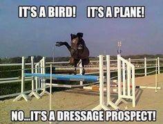 Drassage prospect