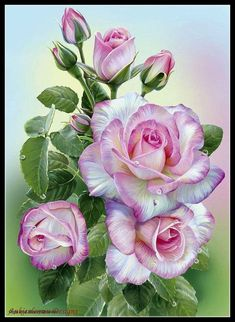 If you think the decoration of your house is insipid and ordinary, our Cross Stitch Diamond Painting Kits can help you to make your drawing room, bedroom and other places become vivifying. Art Floral, Diy Flowers, Vintage Flowers, Rose Flowers, Vintage Flower Prints, Floral Flowers, Morning Rose, Fleurs Diy, Flower Pictures