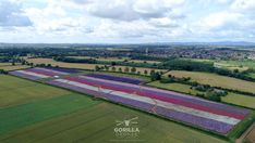 """A Virtual Flower Field Tour! Now you can take a """"virtual tour"""" of our beautiful Confetti Fields! A virtual flower field tour - thanks to clever 360 degree drone footage filmed in summer 2019 by Gorilla Drones, you can experience what it might Special Flowers, Real Flowers, Pretty Flowers, Colorful Flowers, Virtual Flowers, Immersive Experience, Wedding Confetti, Delphinium, Flower Petals"""