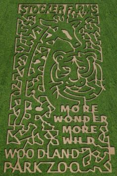 Stocker Farms Corn maze this year! Cant wait to hit this place up with the boy!