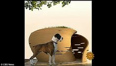 Circular Dog House by Trent Tesch mimics the circular movement of a dog as it curls up to sleep from CBS Sunday Morning via MailOnline. #Dog_House #Trent_Tesch #CBS #MailOnline