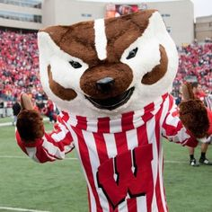 University of Wisconsin Badgers mascot, Bucky Badger. He made his debut in 1949.