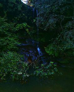 Waterfall Australia.  #instagood #beautiful #photooftheday #love #water #waterfall #travel #landscape #australia #summer #forest #naturelovers #picoftheday #beauty #pretty #photo #amazing #green #blue #life #art #flowers #vscocam #nokia808 #tree #instadaily #fun