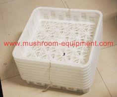 mushroom equipment,mushroom equipment,growing mushrooms indoors: Mushroom plastic tray for mushroom growing product...