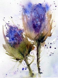 watercolor thistle - Google Search