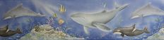 Aquarium, Pets, Animals, Line, Goldfish Bowl, Animales, Animaux, Fish Tank, Animal Memes