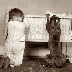 "Pit Bulls- The original ""Nanny"" Dogs"