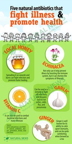 Five Natural Antibiotics