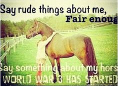 "❤ ""Say rude things about me, Fair Enough... Say something about my horse WORLD WAR 3 HAS STARTED!"" <3"