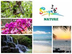 Sanya Nature is rich and beautiful. Share any of my Sanya posts and you will have a chance to win Amazon e-cards from @visitsanya #SanyaPhotoCollage #SanyaHeartstoHearts #SanyaUGCShare