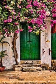 Bougainvillea in Hoi An, Vietnam Bougainvillier door by Michel Latendresse on FivehundredpxBougainvillea and green door in Lefkada island, Ionian sea, GreeceThis image is color harmony. The green door and pink flowers are complementary colors, which
