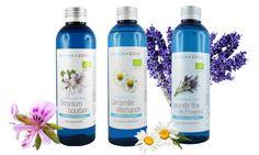 Prévention de l'allergie saisonnière : le réequilibrage immunitaire avec l'aromathérapie