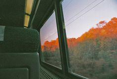 Take a train ride