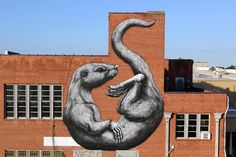 ROA - Arkansas - Street Art News