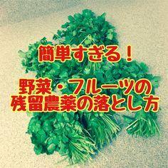 農作物を害虫から守るために撒かれる農薬。 実は日本の農薬使用量は世界でもトップクラス。 例えばリンゴはアメリカの2倍・EUの2.5倍の量の農薬が使われています。 そのためEUや台湾などには残留農薬量オーバーのため日本のイチゴやミカンは輸出できません。 (輸出用に畑や農薬を変える農家もいるそうです) 残留農薬を避けるにはオーガニックのものを買うのが一番ですが、どこにでも売ってる訳じゃないし、お値段も高くてなかなか買えないケースも多いですよね。 ということで今回は、 農薬を簡単に落とす方法 をご紹介します!