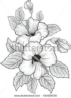 Blooming beautiful hibiscus flower. Hawaii symbol. Card or floral background for invitation. Colored silhouette isolated on white background. Vector illustration.