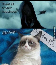 grumpy cat victory against dementors.
