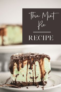 How to make Thin Mints cookies ice cream pie, an easy Girl Scout cookies recipe. Girl Scout Cookies Recipes, Easy Cookie Recipes, Delicious Cookie Recipes, Holiday Cookie Recipes, Homemade Desserts, Frozen Desserts, Dessert Recipes, Thin Mint Cookies, Ice Cream Cookies