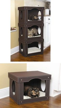 I'm allergic to cats. BUT this cat bed/ cat tower is so dang clever! Cut holes in upscale storage boxes.and so many of you have cats. Pet Beds, Dog Bed, Diy Pour Chien, Cat Towers, Cat Condo, Cat Room, Pet Furniture, Animal Projects, Cat Crafts