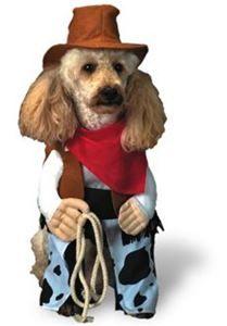Cowboy Doggy Pet Costume