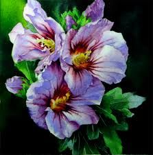 hibiscus paintings pinterest - Google Search