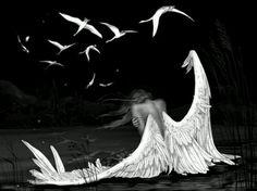 Falling Angel