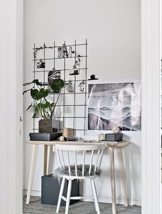 Iron mesh board, plant, small workspace