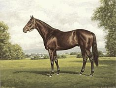 Richard Stone Reeves - War Admiral - Limited Edition Print