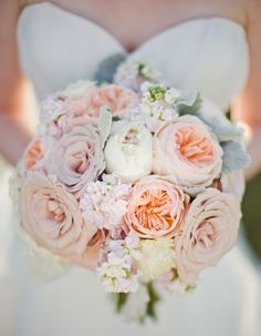 Peachy Perfect Bridal Bouquet of Roses, Peonies, Stock and Dusty Miller {Photo: Morrissey Photo)