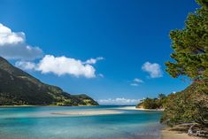 Photo of a beautiful sunny day at Houhora Heads, Northland. New Zealand landscape photography canvas, fine art print
