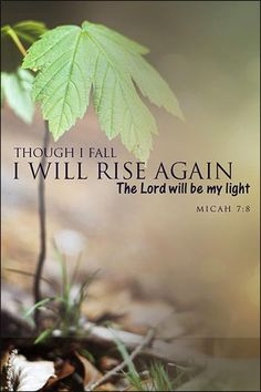 """""""But as for me, I will watch expectantly for the LORD; I will wait for the God of my salvation. My God will hear me. Do not rejoice over me, O my enemy. Though I fall I will rise; Though I dwell in darkness, the LORD is a light for me. Biblical Quotes, Bible Verses Quotes, Bible Scriptures, Faith Quotes, Spiritual Quotes, Fall Bible Verses, Powerful Scriptures, Spiritual Power, Spiritual Guidance"""