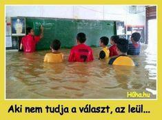 ...és megfullad!😂😂😂 Bad Memes, Funny Memes, Jokes, College Humor, School Humor, Wtf Funny, Funny Fails, Swimming Motivation, Swimming Funny