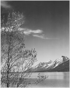 """Grand Teton"" National Park, Wyoming - by Ansel Adams"