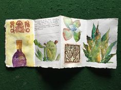 Bountiful Baja, image exploration with Helen Shafer Garcia, May 4-7, 2017 - Watercolor/Mixed Media, Plein Air and Journaling at the Rancho La Bellota. Images by Caroline Aguliar