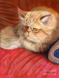 Persian Cat by Svetlana Ledneva-Schukina