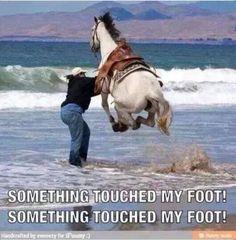 Haha funny!!!!:-)
